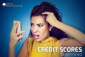 How are Credit Scores Determined
