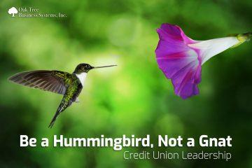 CU Management Be the Hummingbird